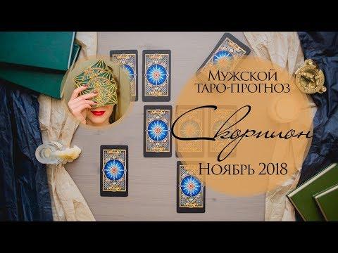 Мужской прогноз Скорпион НОЯБРЬ 2018