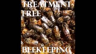 Treatment Free Beekeeping Podcast - Episode 32 - Kirk in Vermont