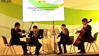 Verdi string quartet in E minor 1. Allegro