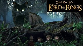 Lord of the Rings + My Cat