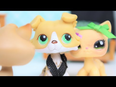 LPS: Bad Boys & Leather Jackets ~ #5 (Courage & Protector)