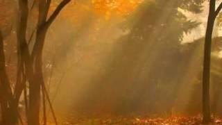 Листья жгут ...