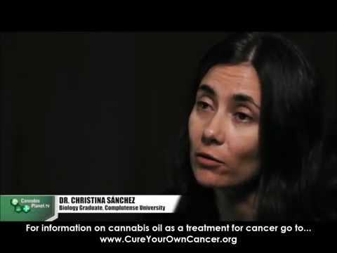 Dr.Christina Sanchez explains how cannabis kills cancer cells (MORE at cureyourowncancer.org)