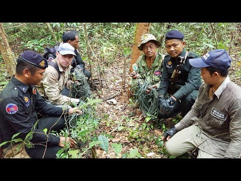 Wildlife Alliance Rangers Confiscate 150 Snares