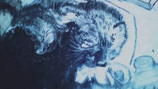 Рисунок кота карандашом,  углем
