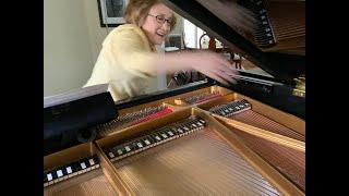 "Lisa Emenheiser performs ""Cadenza with Tolling Bells"" from ""Eine Kleine Mitternachtmusik"" by Crumb"