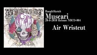 RoughSketch / Air Wristcut [Official Audio]