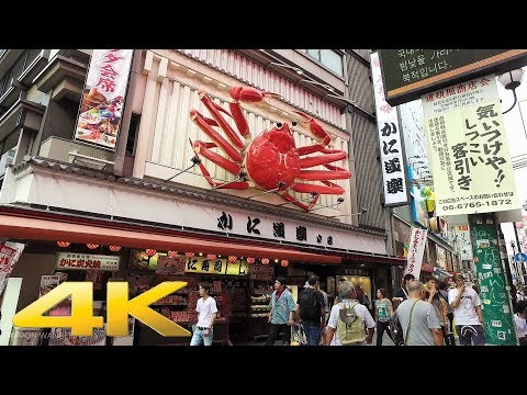 Walking around Dotonbori Shopping Street, Osaka - Long Take【大阪・道頓堀】 4K