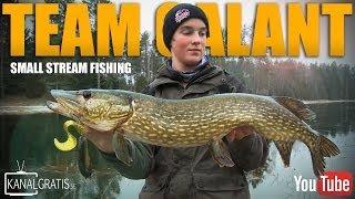 good pike fishing in a swedish stream   team galant english subtitles