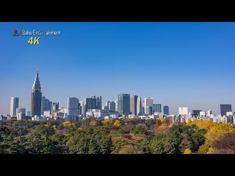 [4K] 新宿御苑の紅葉 Shinjuku Gyoen National Garden in Autumn Tokyo Japan