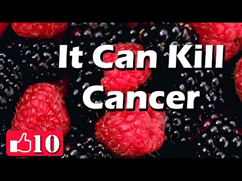 Top 10 Cancer Fighting Foods – Alternative Cancer Treatments