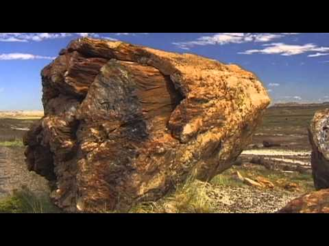 Petrified Forest Vacation Travel Video Guide
