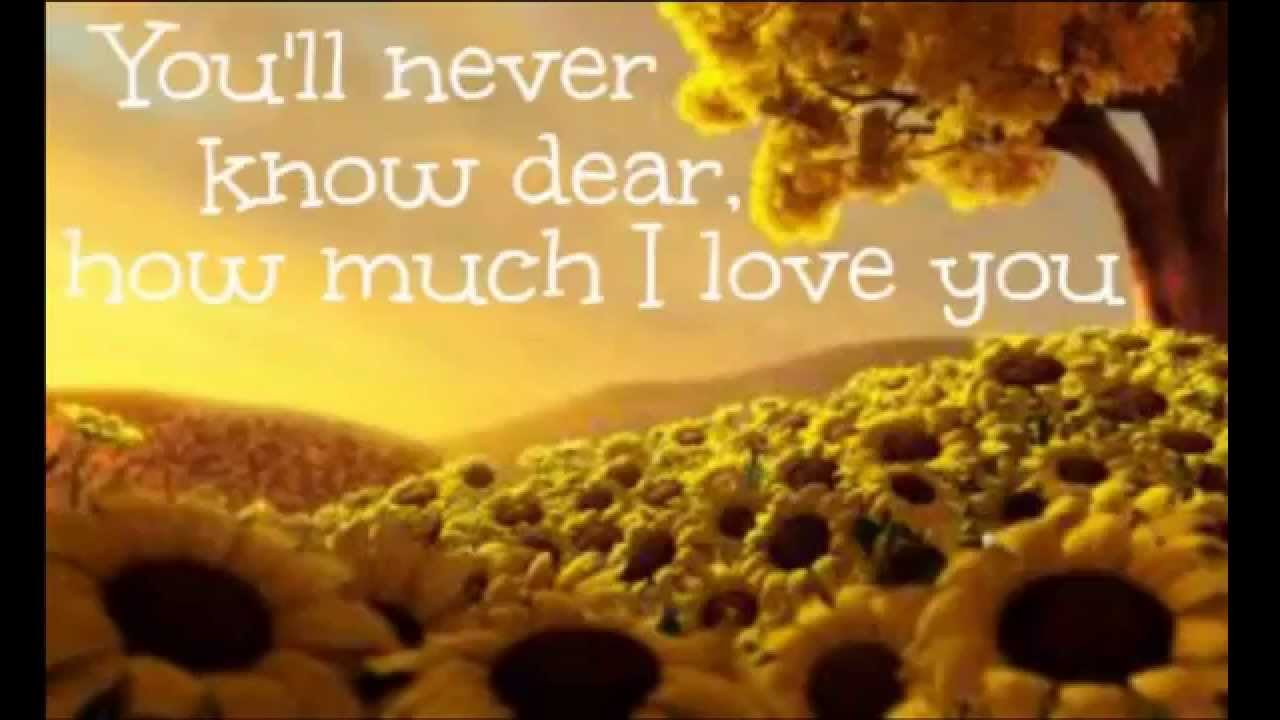 Elizabeth Mitchell You Are My Sunshine Lyrics Youtube