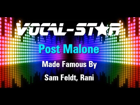 Sam Feldt, Rani - Post Malone (Karaoke Version) with Lyrics HD Vocal-Star Karaoke