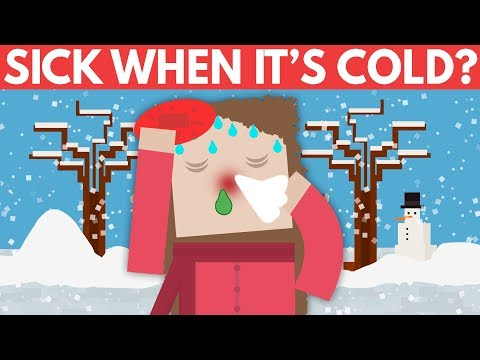 Why Do You Get Sick When It's Cold? - Dear Blocko #9