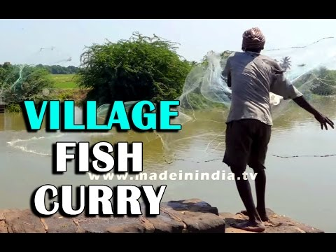FISHER MAN CATCHING FISH AND MAKING YAMMY FISH CURRY | VILLAGE FOOD FACTORY street food