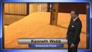 Kenneth Webb on WLOS Channel 13, Asheville, NC