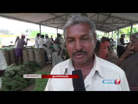 Karur farmers upset over poor prices for Moringa