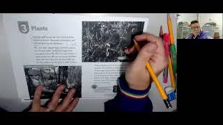 Publication Date: 2021-06-30 | Video Title: Plants