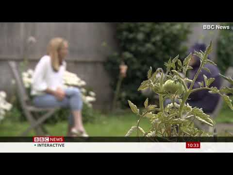 BBC airs N-word in report by Fiona Lamdin on Bristol incident