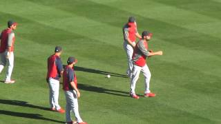 St. Louis Cardinals Dance Party
