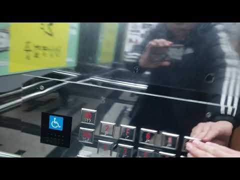 경기도 용인시 수지구 포은대로512번길 10 (죽전동) 프리미엄가구백화점 티센크루프엘리베이터 탑사기