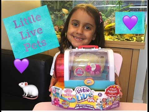 Little Live Pets Mouse - Review