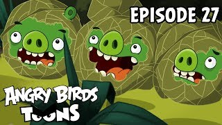 Angry Birds Toons | Green Pig Soup - S1 Ep27