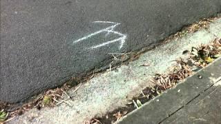 Where the Sidewalk Ends by Shel Silverstein (read by Tom O Bedlam)