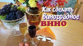 Как сделать виноградное вино.Из винограда Изабелла.Простой способ изготовления вина.