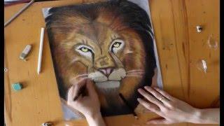 Lion Рисуем льва с нуля draw a lion 如何繪製的獅子(, 2016-04-18T08:32:29.000Z)