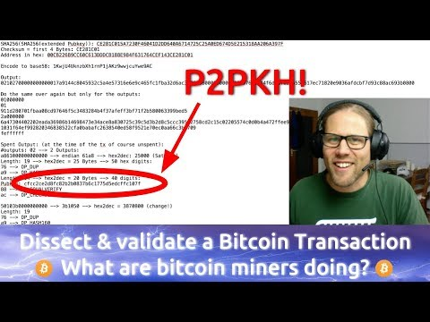 Dissecting A P2PKH Bitcoin Transaction Down To The Last Byte
