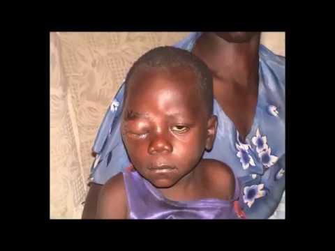 WORLDS MOST EVIL   ROBERT MUGABE KILLING FIELDS