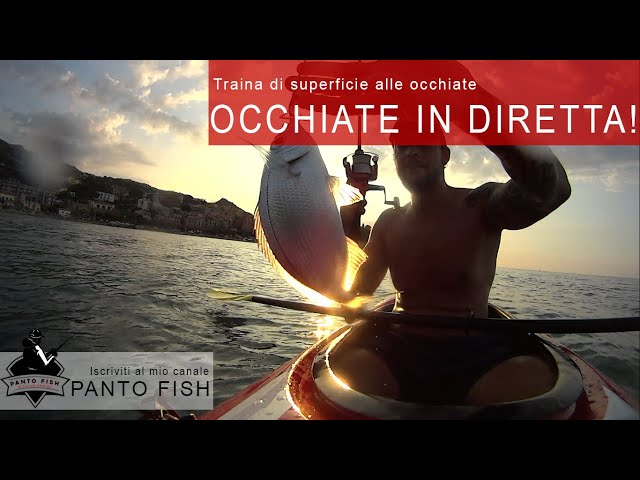 Traina di superficie alle Occhiate in kayak
