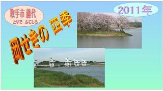 岡ぜきの一年(春~冬)2011年.wmv