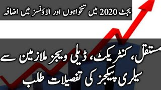 Pay increase in budget 2020 by daily nts and ppsc jobs