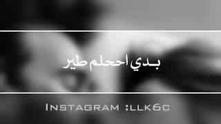 بدي احلم طير   علاء الامين