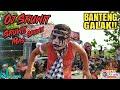 Bantengan NGUBER!! Penonton Sruwit2   New Satriyo Mudo Live Lap Banengan Klepek Kunjang
