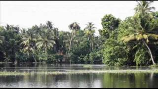 beautiful Kuttanad, beautiful village in india kerala, with background song kalakalam kayalolangal