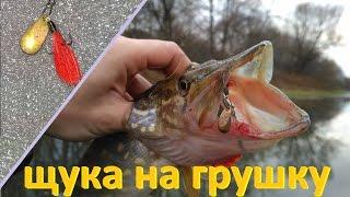 Щука на грушку (пуля, кукурузка)(Жалко что эту приманочку поставил в конце рыбалки, было две поклевки, дну забрал, другая на 1,5 кг ушла, тройни..., 2016-11-05T19:33:50.000Z)