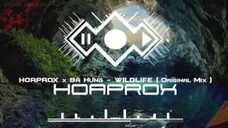 Wild Life - Cao Bá Hưng - Audio.