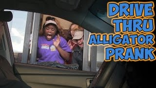 Repeat youtube video DRIVE THRU ALLIGATOR PRANK!!