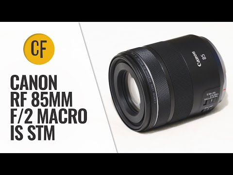 Canon RF 85mm f/2 Macro IS STM lens review with samples