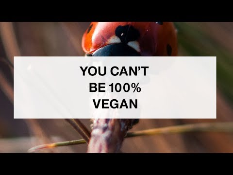 You Can't Be 100% Vegan