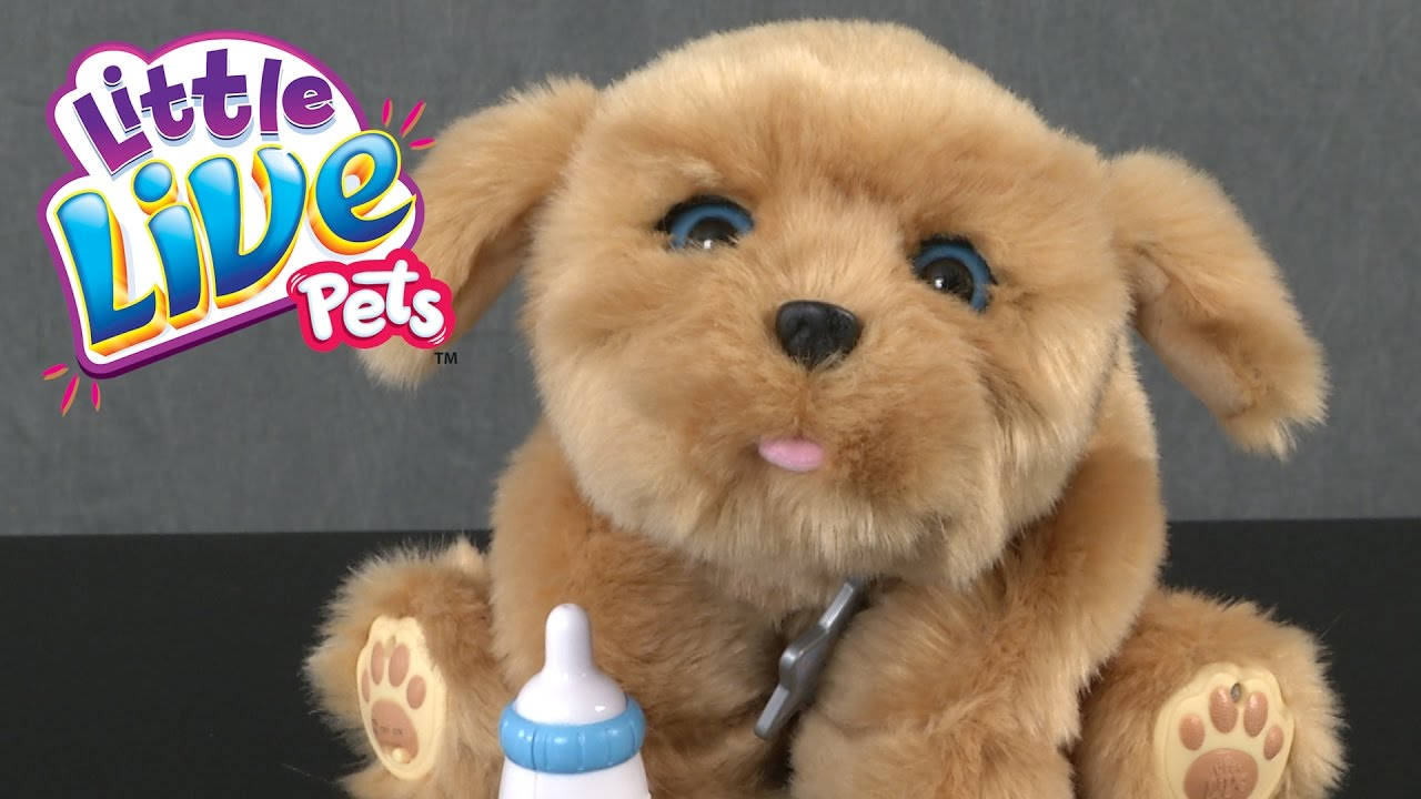 Little Live Pets Snuggles My Dream Puppy From Moose Toys Youtube