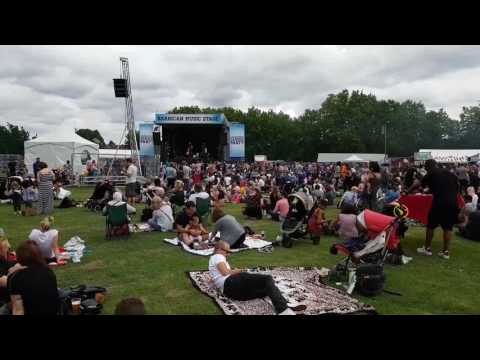 Walthamstow Garden Party 2017 Live