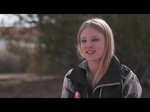 Meet Sara Carson and Her Super Collies