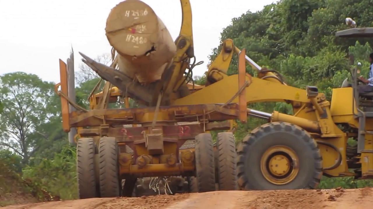 Begini Cara Kerja Alat Berat Logging Kayu di Hutan (Alat ...