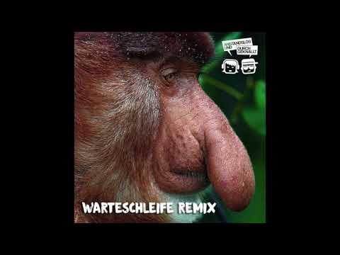 Jonas Fritzsche - Warteschleife (Anstandslos & Durchgeknallt Remix)