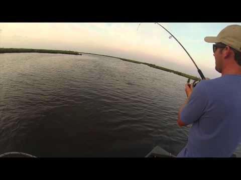 Myrtle Grove Redfish